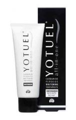 YOTUEL ALL-IN-ONE WINTERGREEN HAMMASTAHNA 75 ml